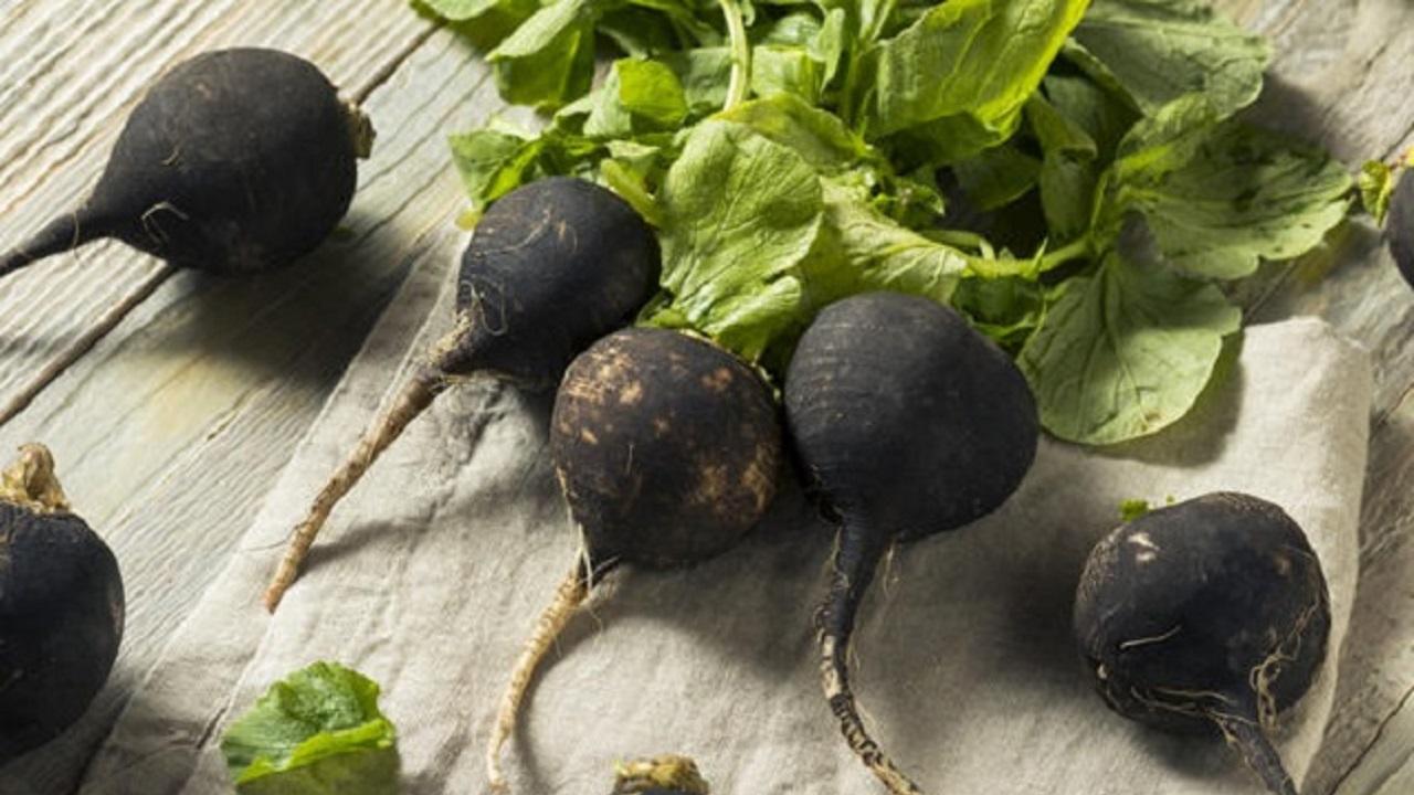 Здравословните ползи от черната ряпа | orientandoo.com